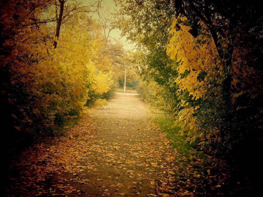 Природа осенью - mAri