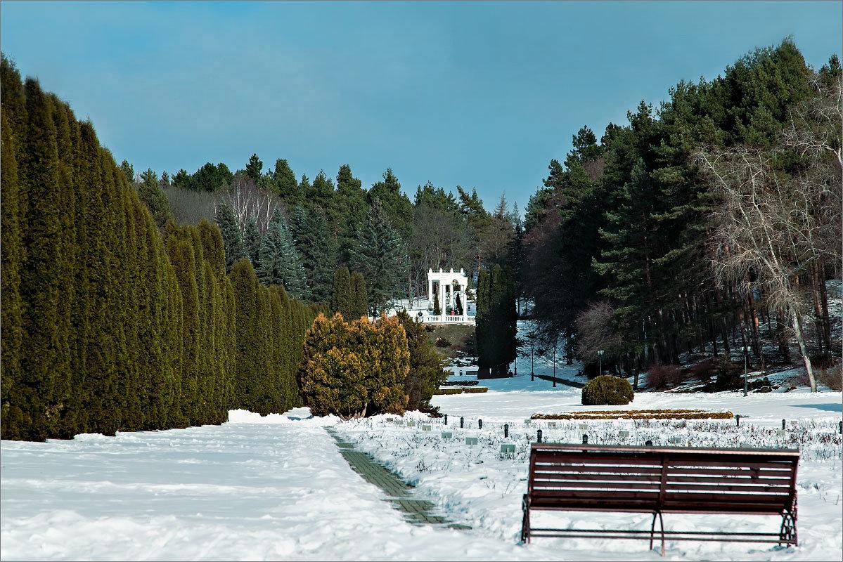 В зимнем парке - Александр Смольников