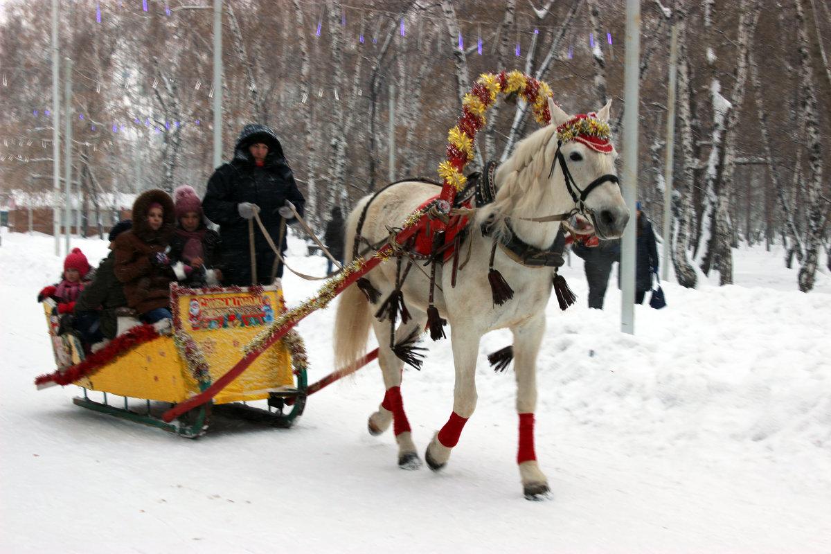Зимние забавы - раиса Орловская