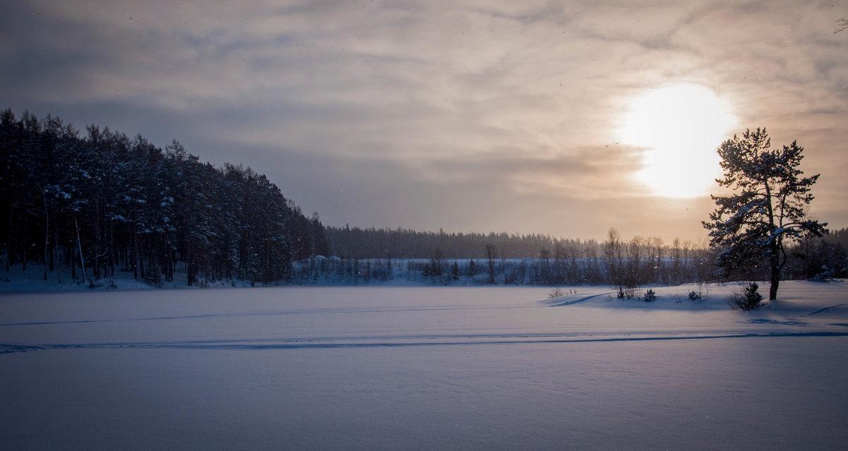 Новое Солнце 2017 - Денис Шестаков