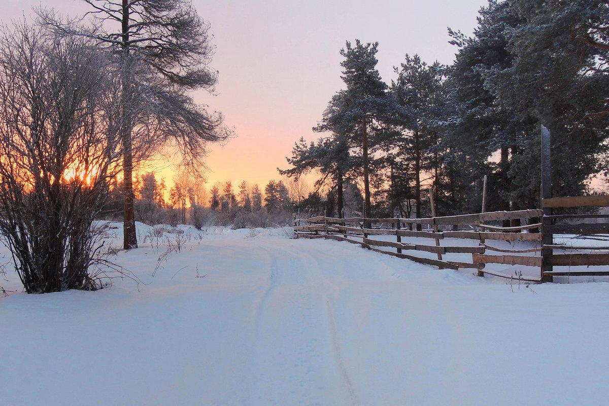 Зимы чудный рассвет... - Павлова Татьяна Павлова