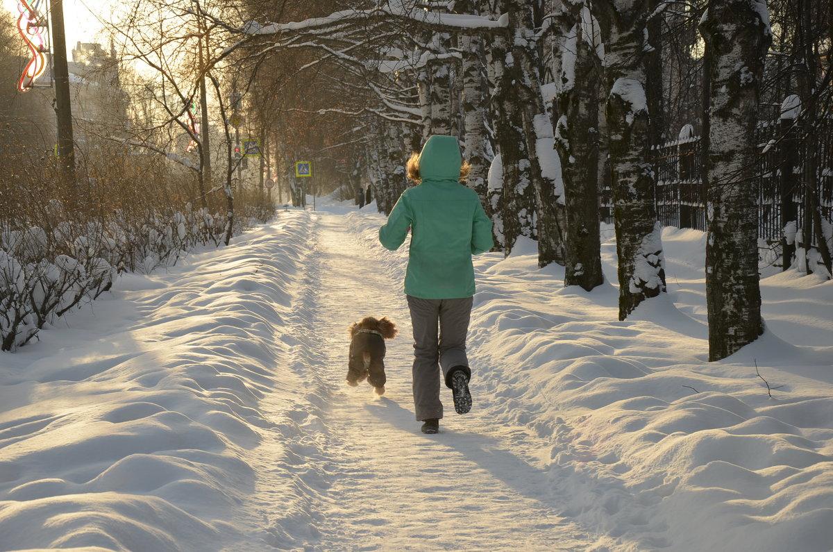 Зимнее утро - Елена ***