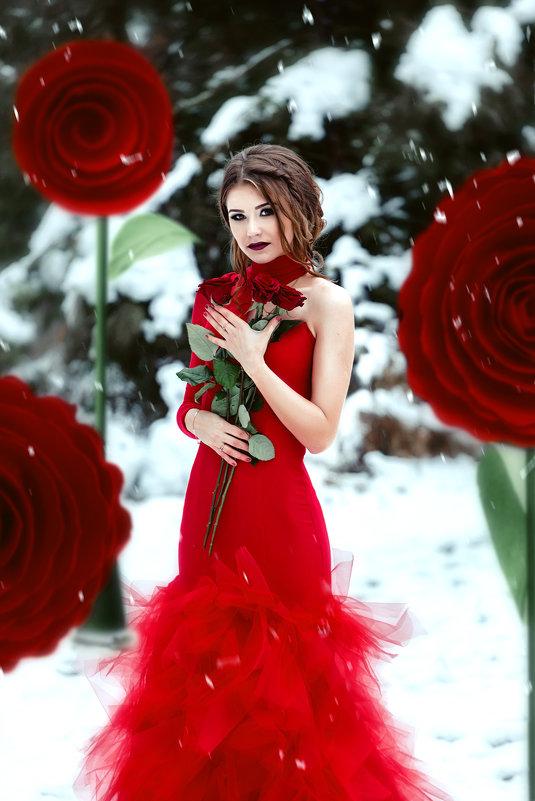 Роза - Ирина Боярко
