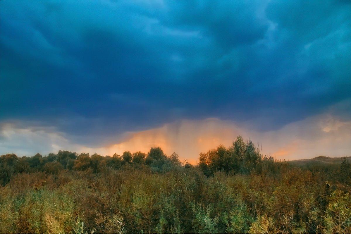 Перед грозой. - Андрей Козлов