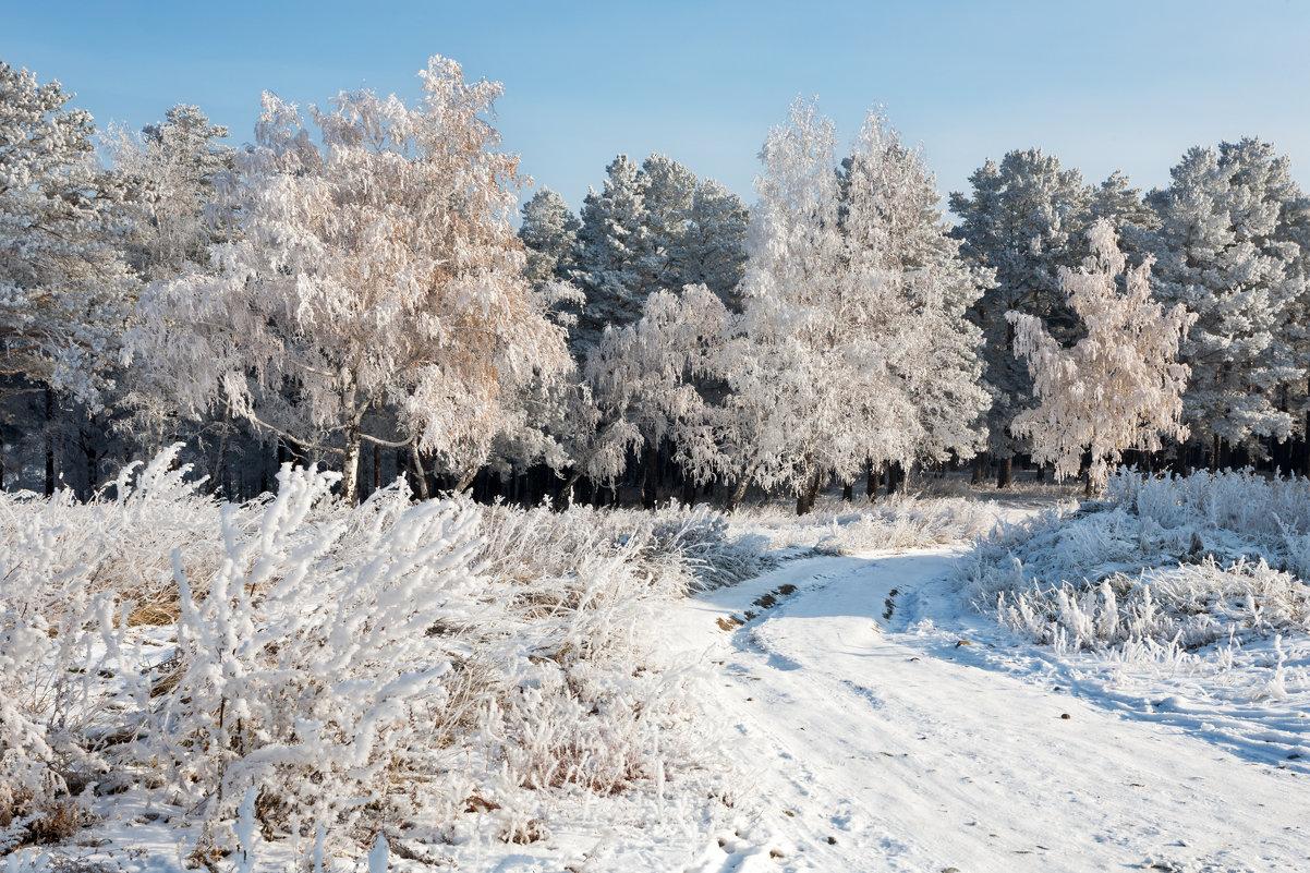Мороз посеребрил всё вокруг - Анатолий Иргл