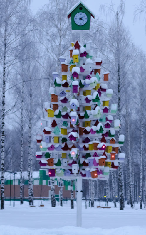 Птичий городок - Андрей Щетинин