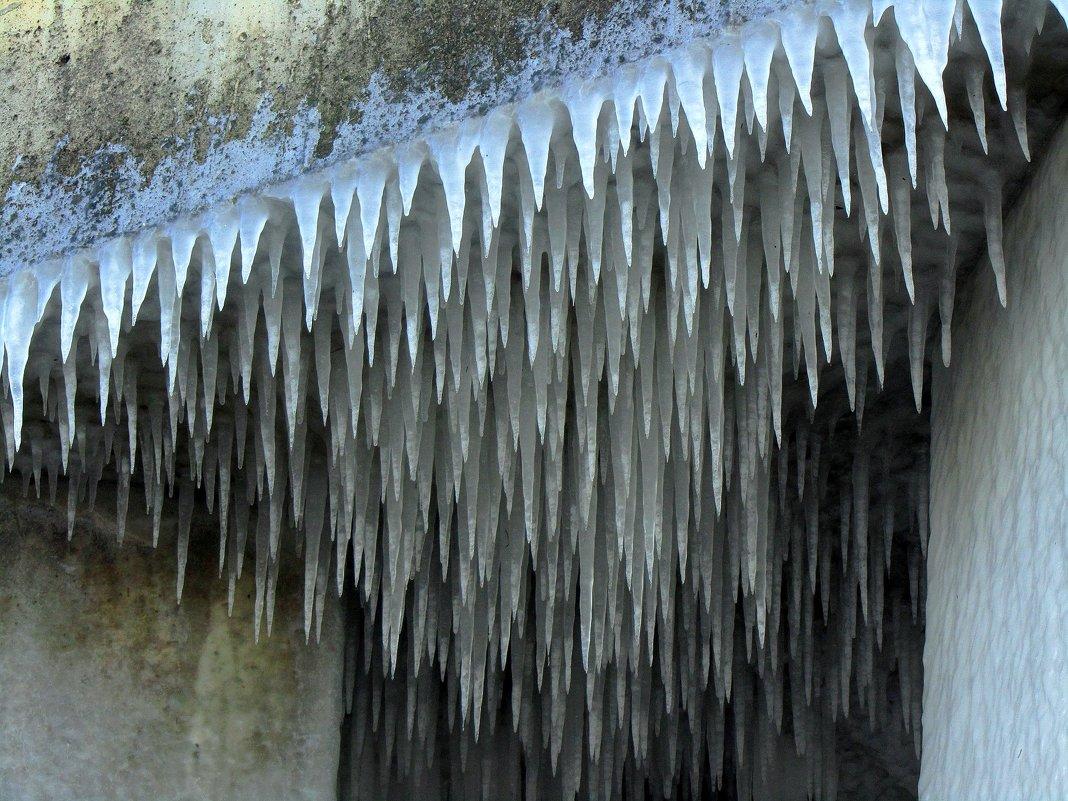 Ледяные иголки - Сергей Карачин