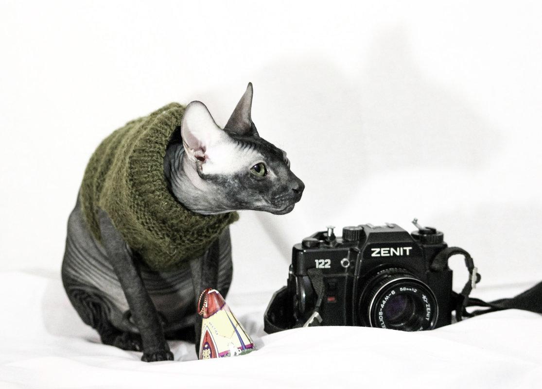 Lex'$ фотограф - Марина Влади-на