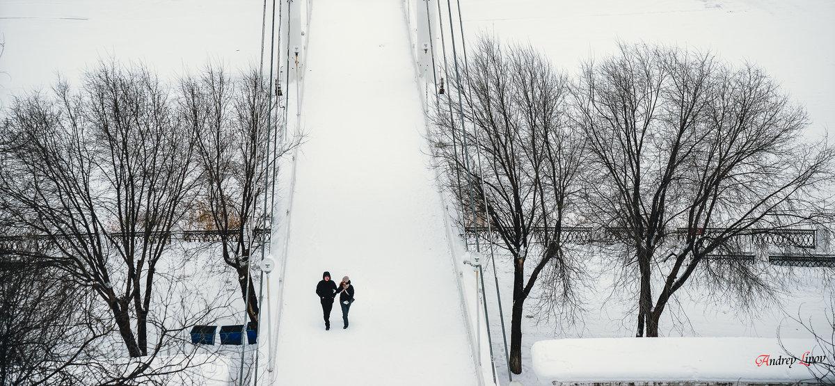 Зимняя прогулка - Андрей Липов