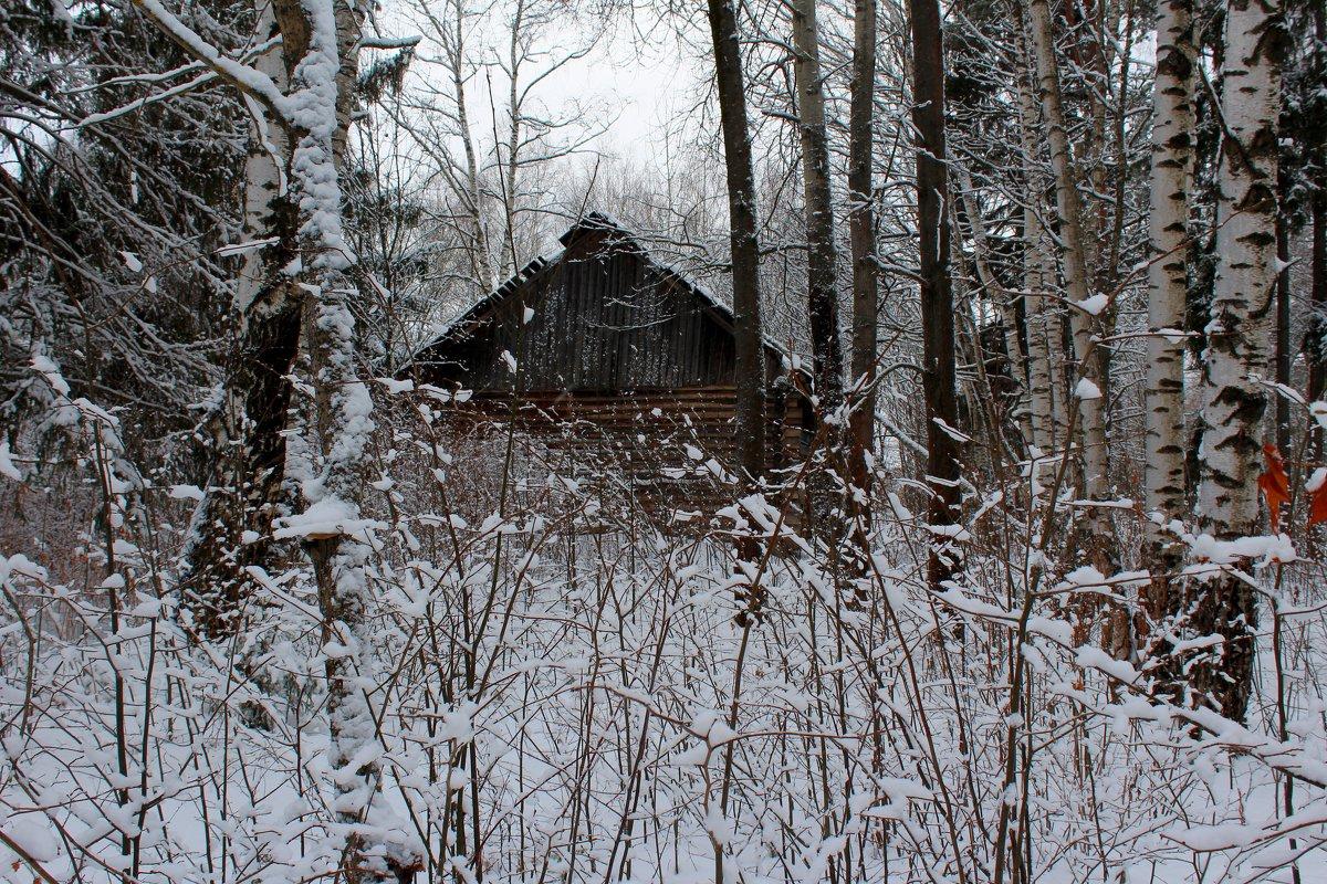 Домик в лесу - Милагрос Экспосито
