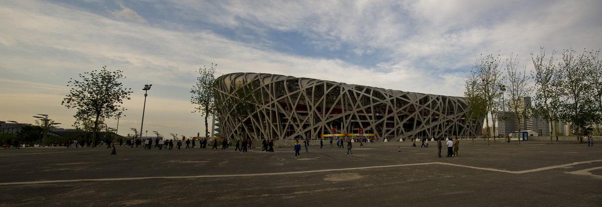 Гнездо, Олимпийский Стадион, Панорама - Alexander Dementev