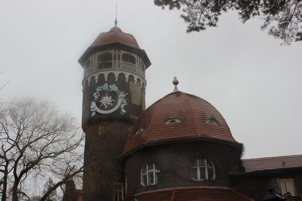 Водонапорная башня под декабрьским дождем - Марина Домосилецкая