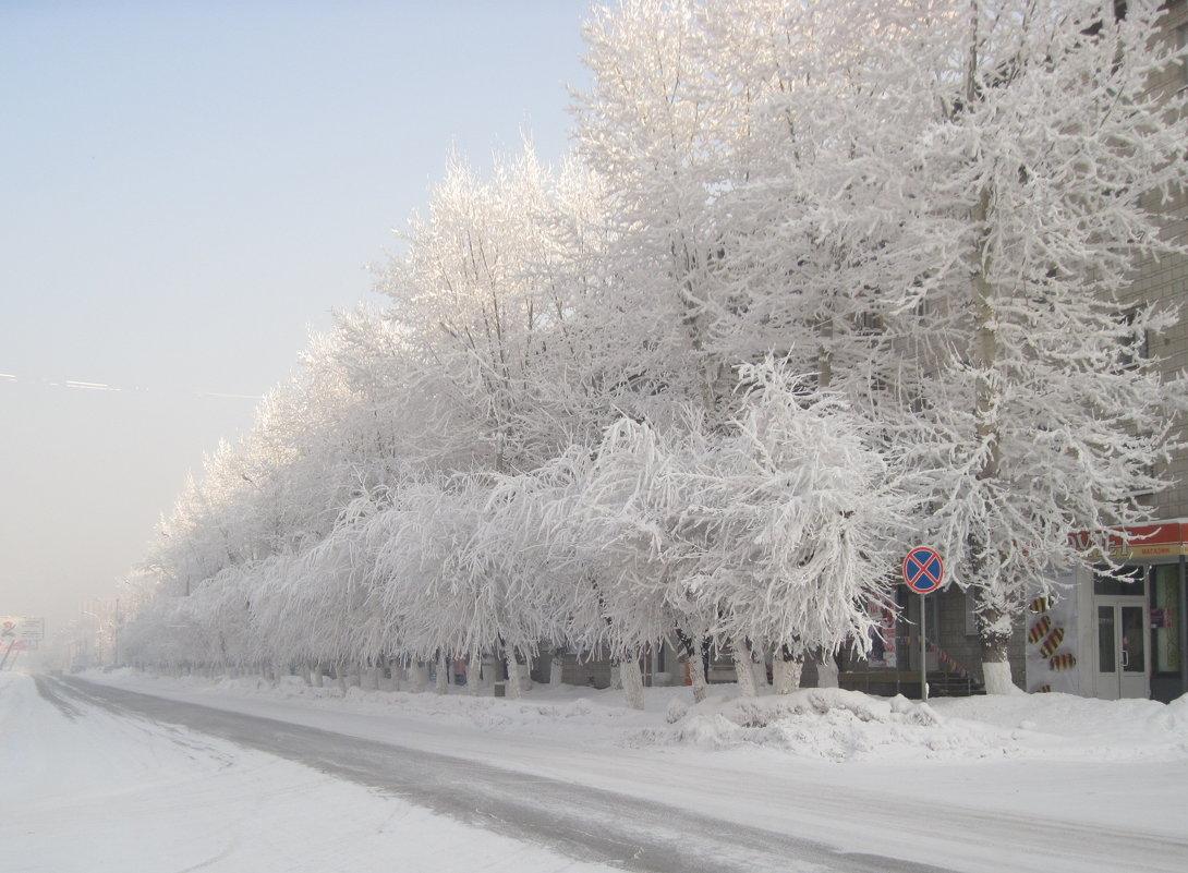 Зима. - Людмила Грибоедова