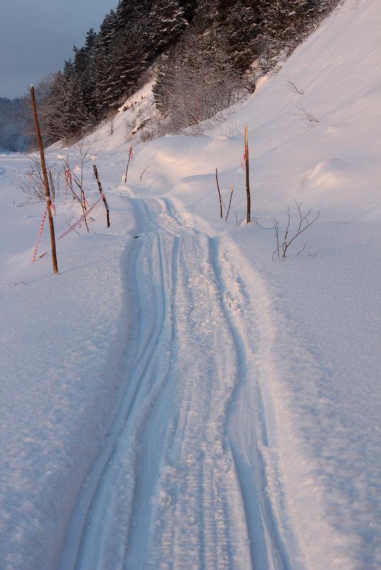 Путь - Дмитрий Арсеньев