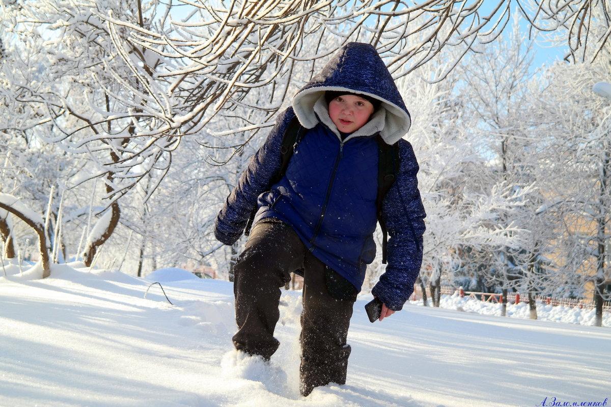 Однажды в студёную зимнюю пору, с трубою в руке..:) - Андрей Заломленков