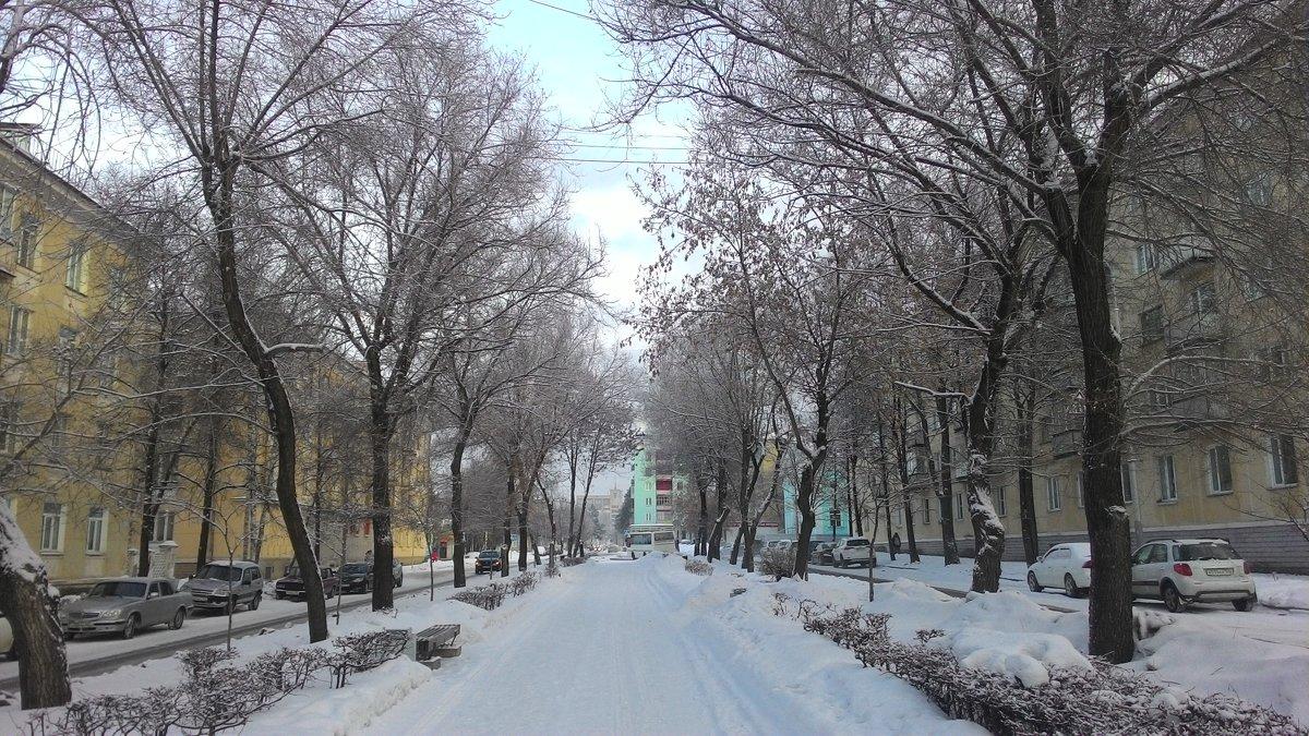 Будни в Новом году))) - Владимир Звягин