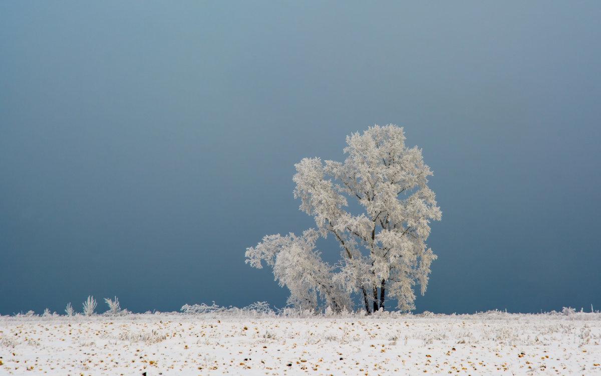 на границе с туманом - Дмитрий Брошко