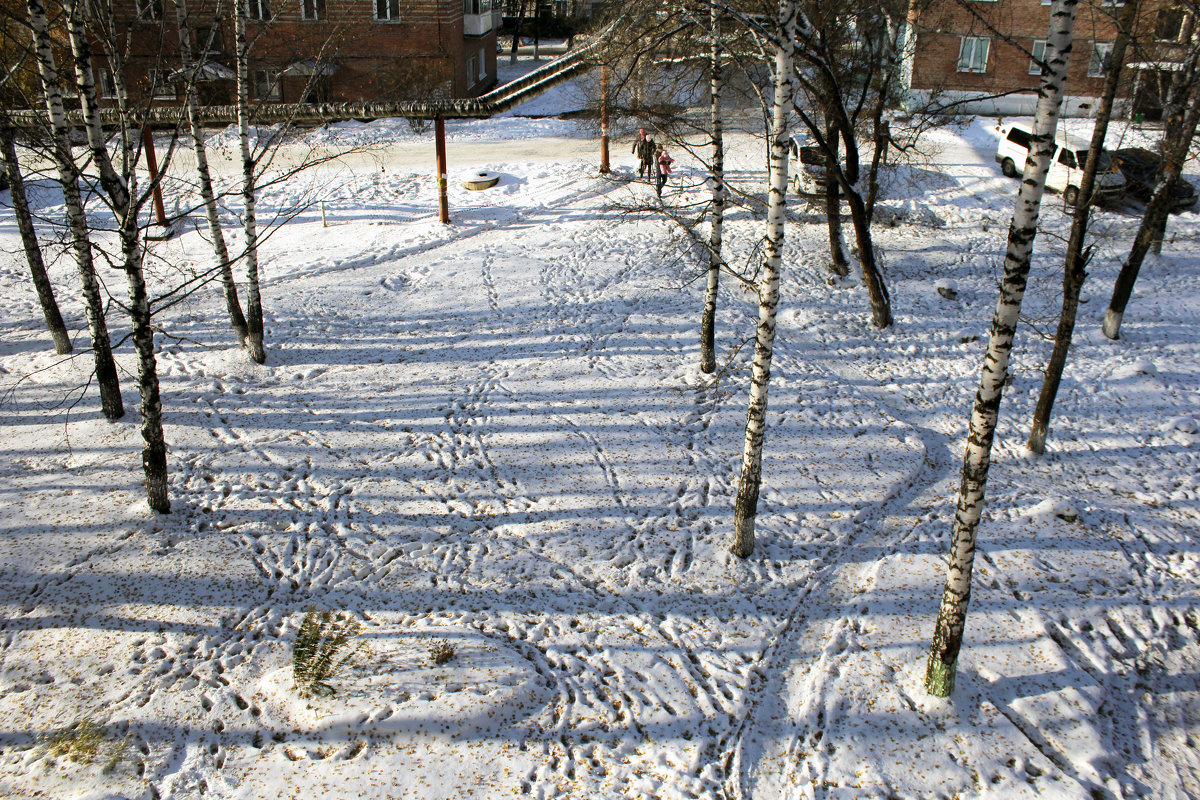 Зимний пейзаж под моим окном. - Ульяна Загуменная
