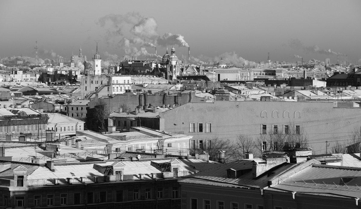 Мороз и солнце, и питерские крыши - Виктор | Индеец Острие Бревна