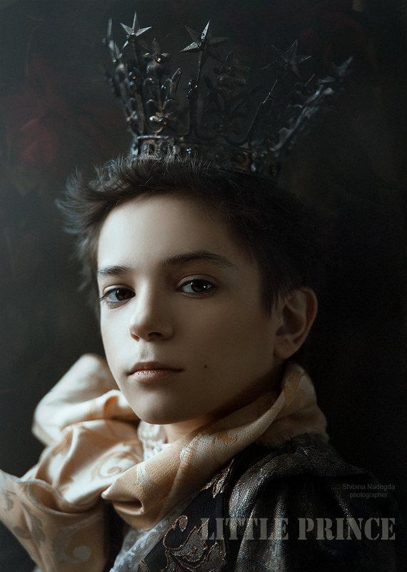 Мой маленький принц - Надежда Шибина