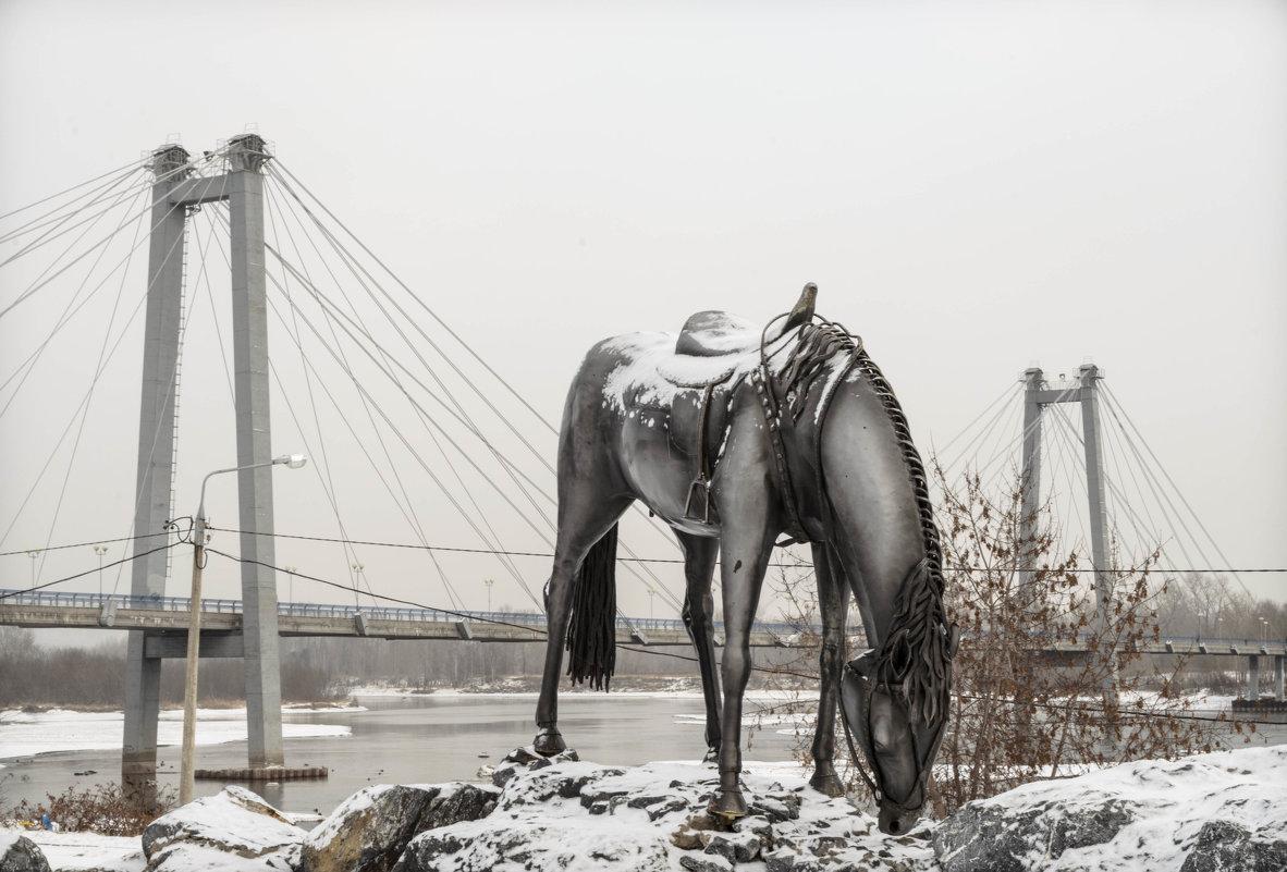 лошадь Мюнхгаузена - XDЩерED 1186