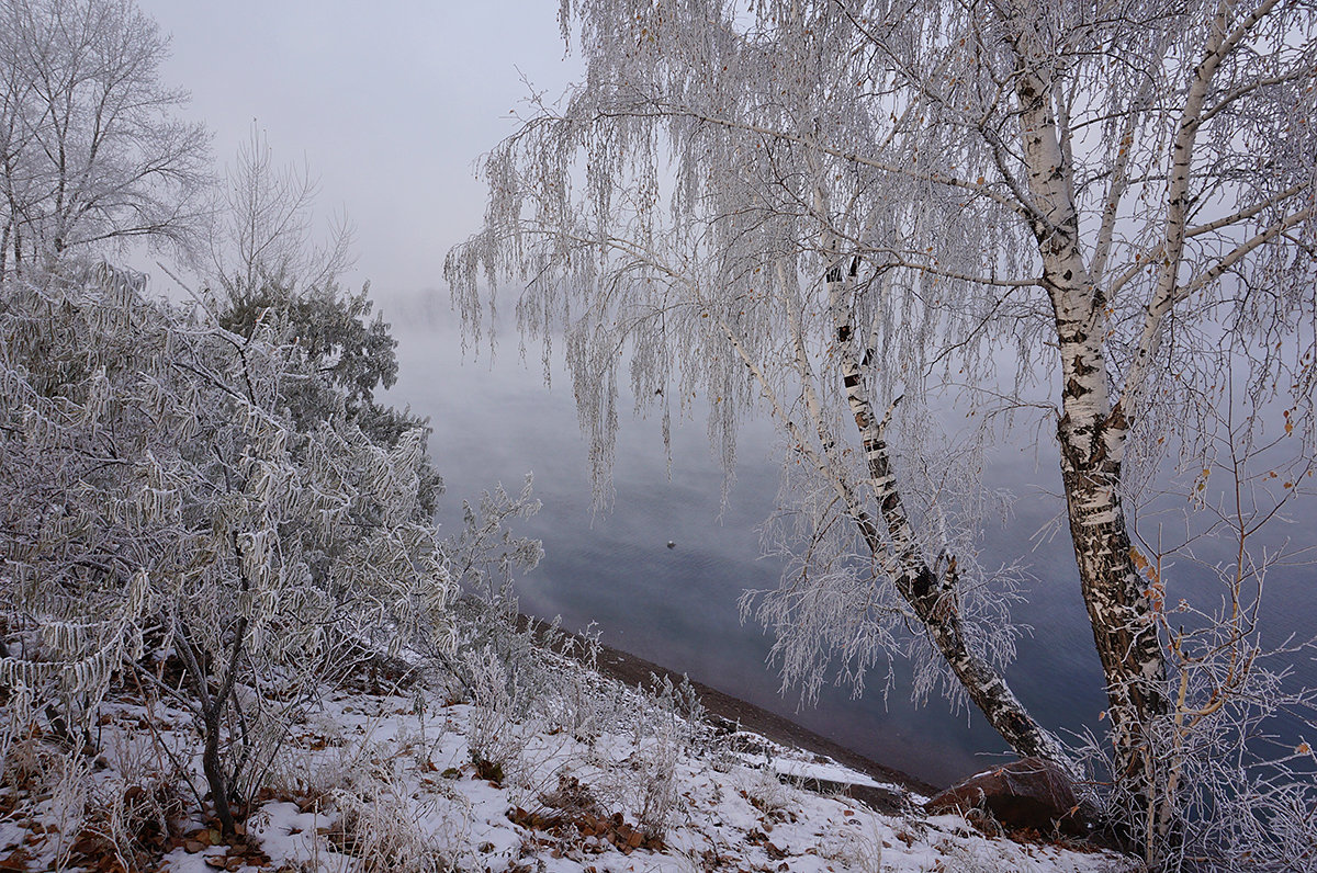 Туман над рекой - Екатерина Торганская