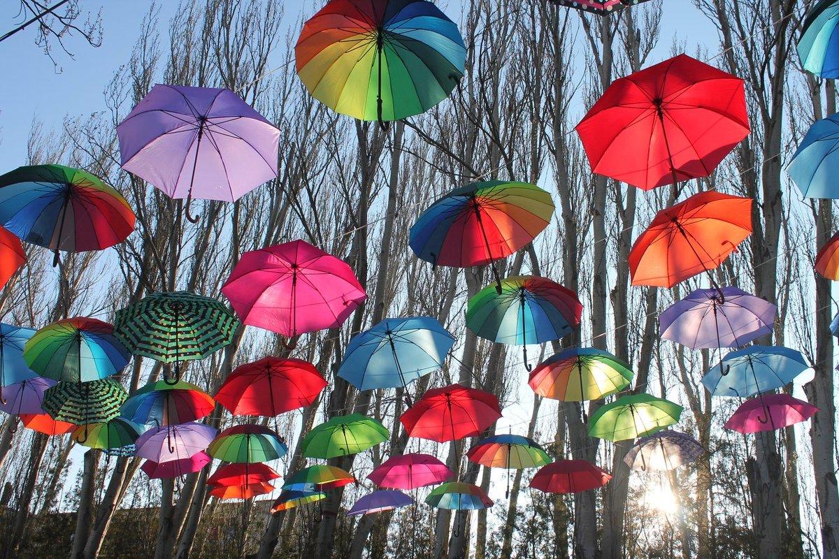 Парящие зонтики - Александр Довгий
