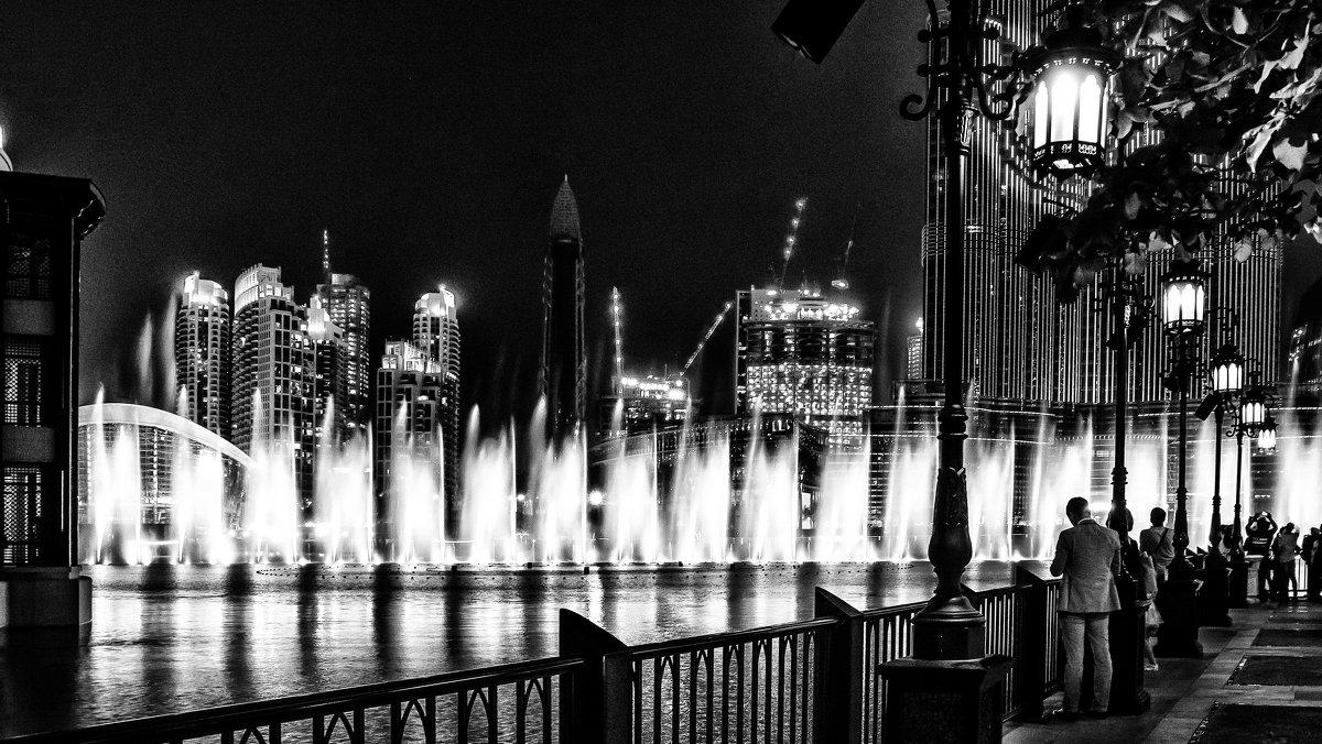 Embankment of the night city/набережная ночного города - Dmitry Ozersky