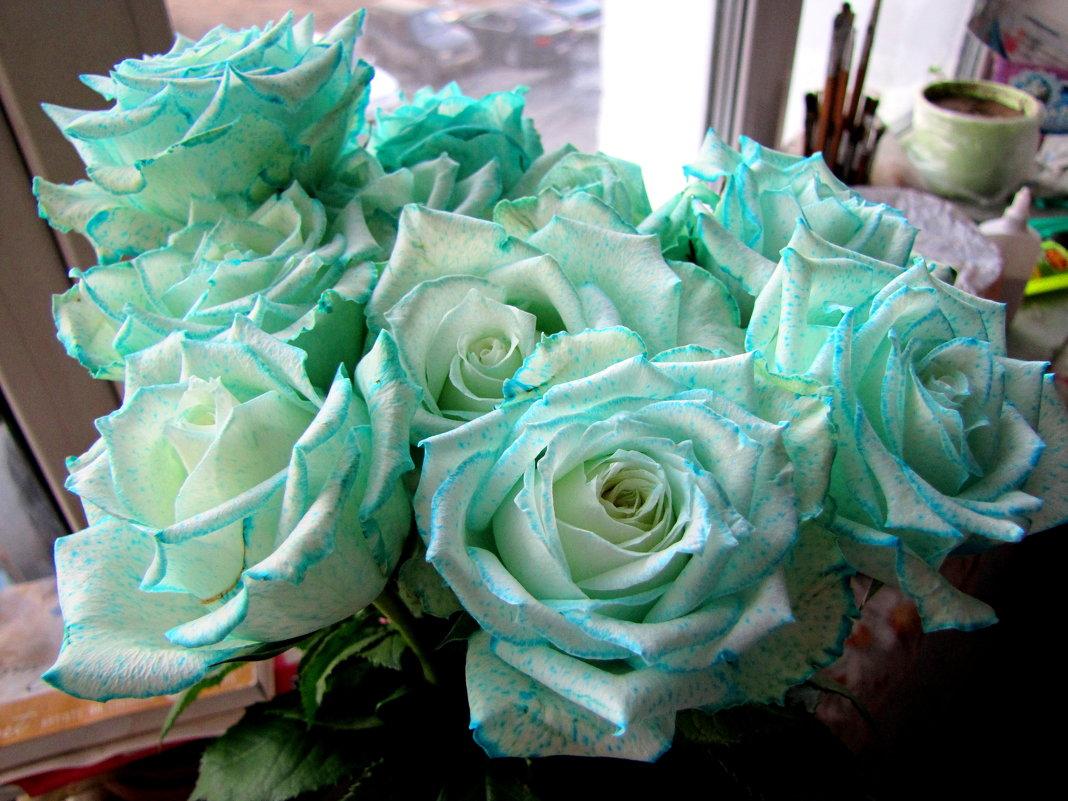 небесные цветы - doberman