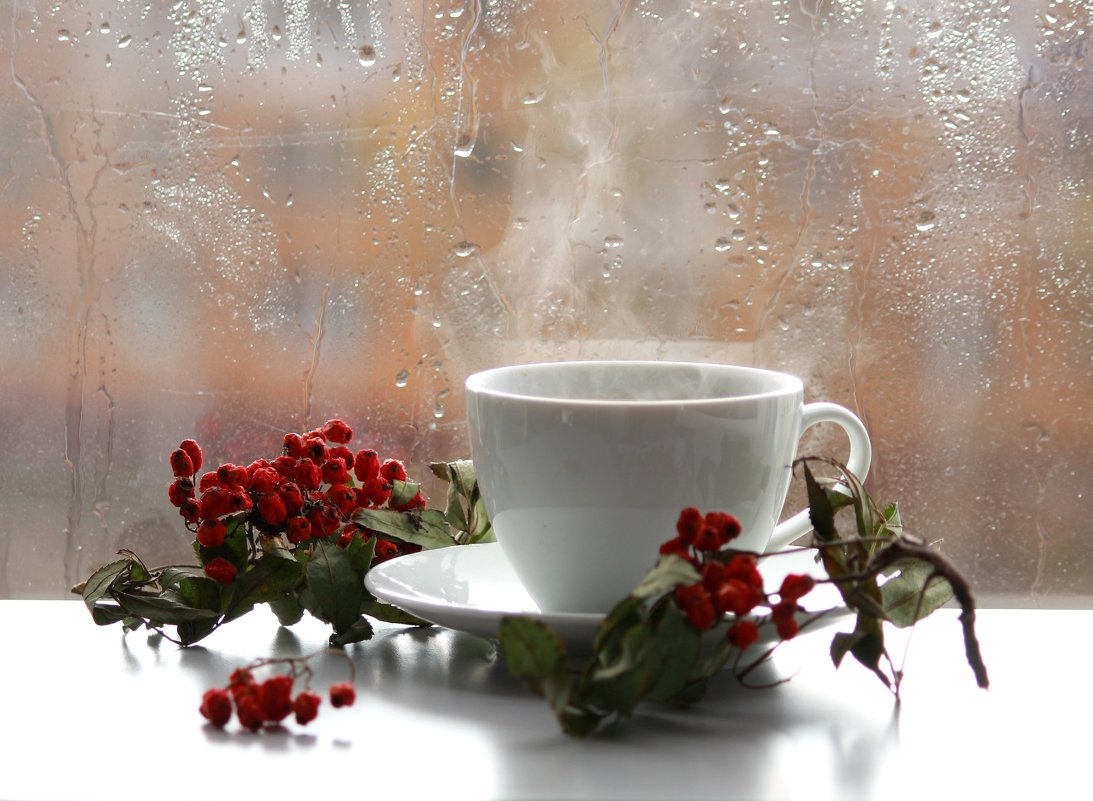 Я вас люблю, мои дожди... - Наталья Казанцева