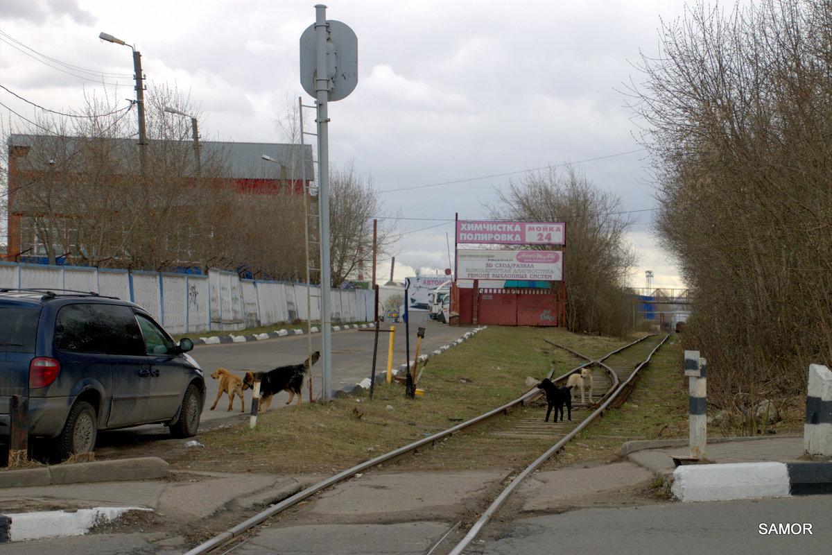 мой город - Валерий Самородов