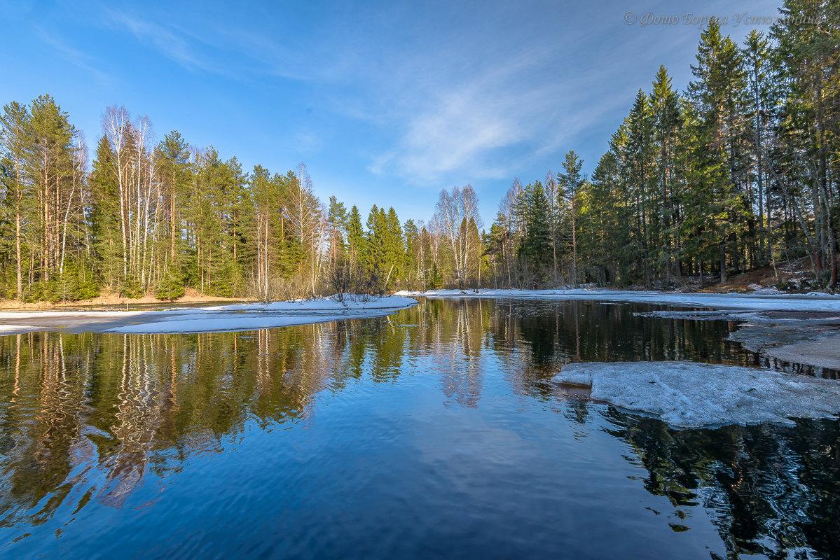 Прогулка на природе - Борис Устюжанин