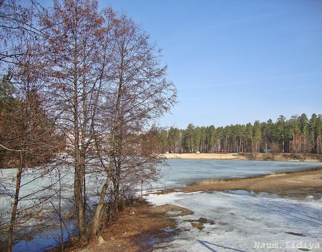 Пробуждение природы - Лидия (naum.lidiya)