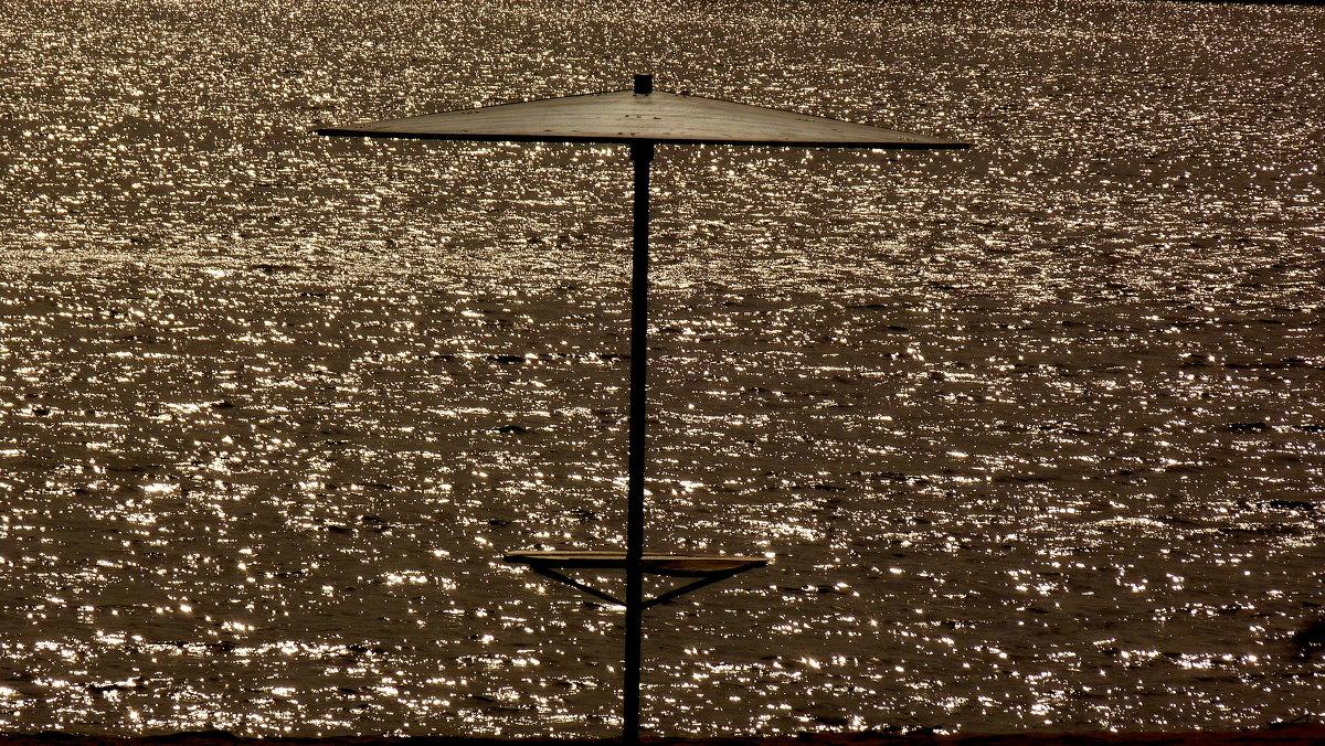 пляжный грибок ждёт лето - Александр Прокудин