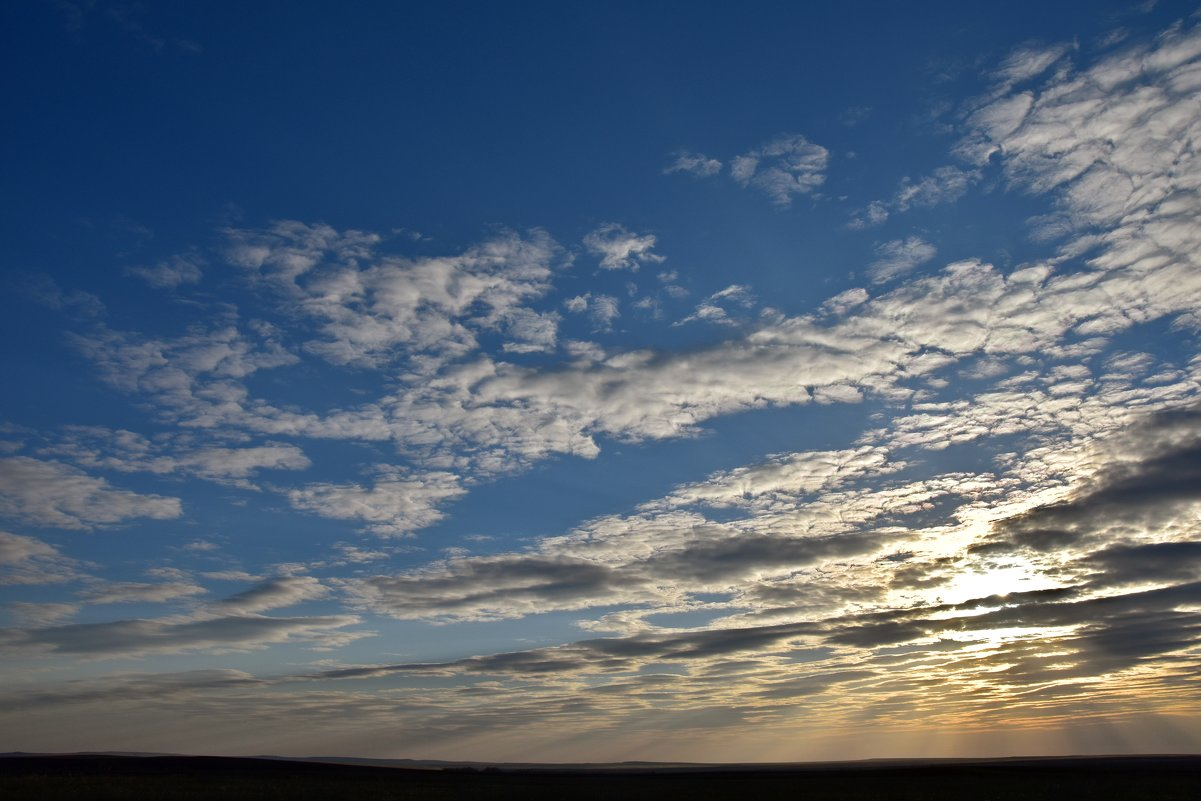 распахнутое небо - Валерия Шамсутдинова