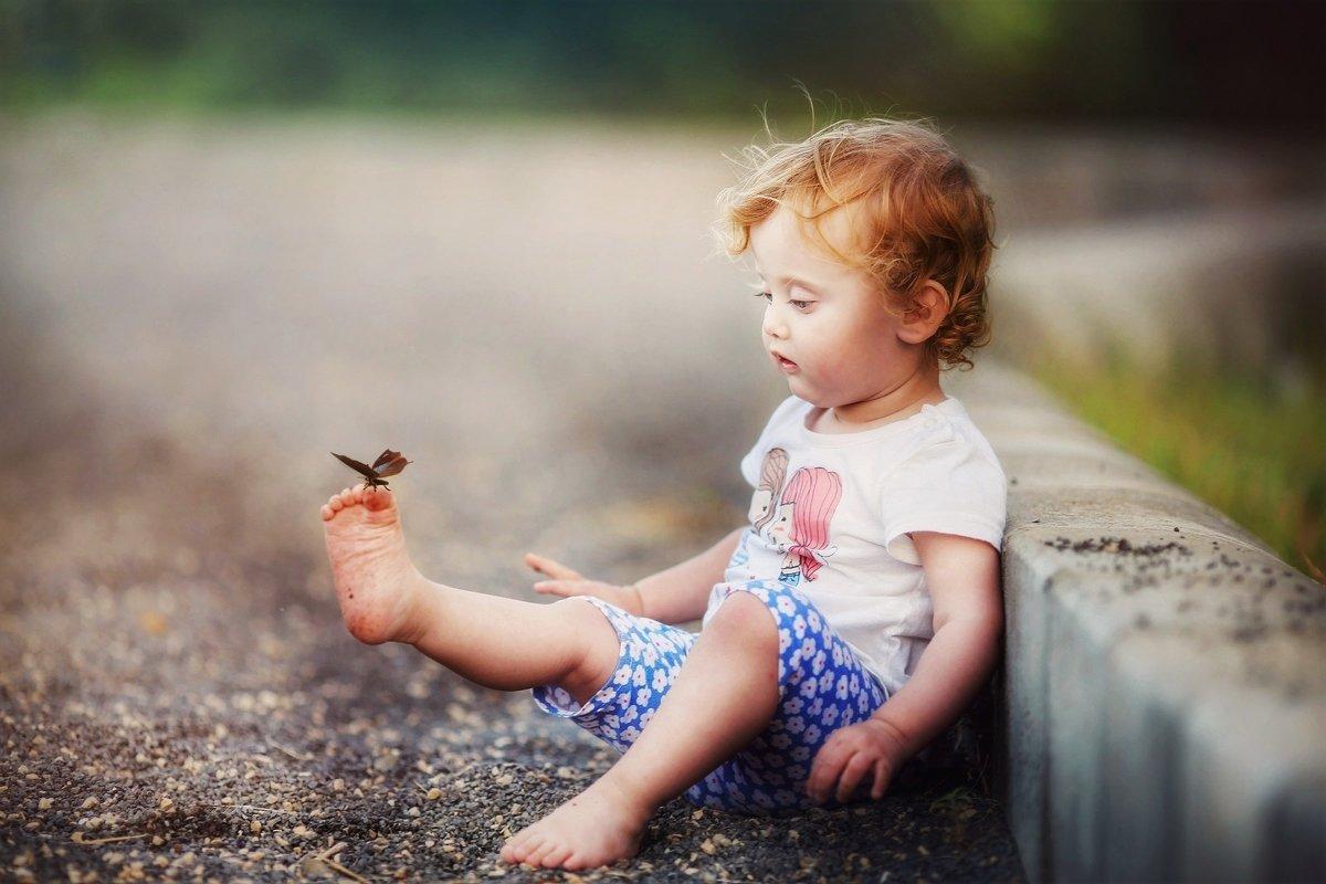 Бабочка - Sergey_grinis