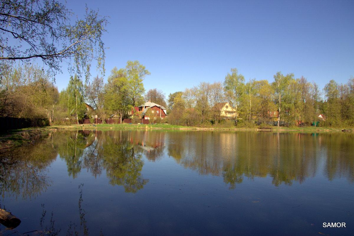Золотой пруд - Валерий Самородов