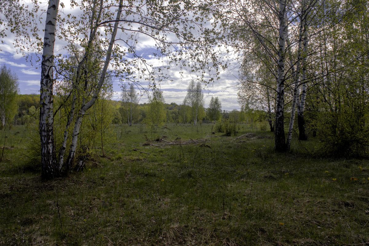 Дивная красота рязанской окраины - Константин Тимченко