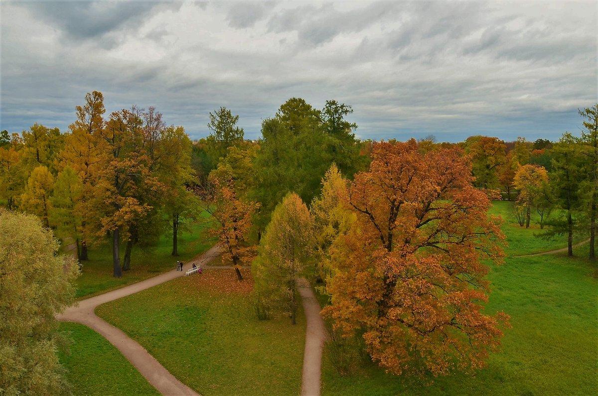 Вид с Башни-Руины на Рампповою аллею... - Sergey Gordoff
