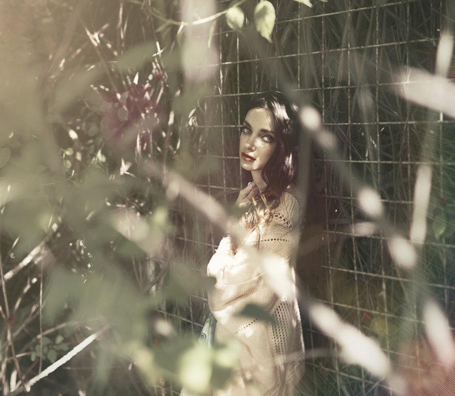 Блик объятия - Мария Буданова