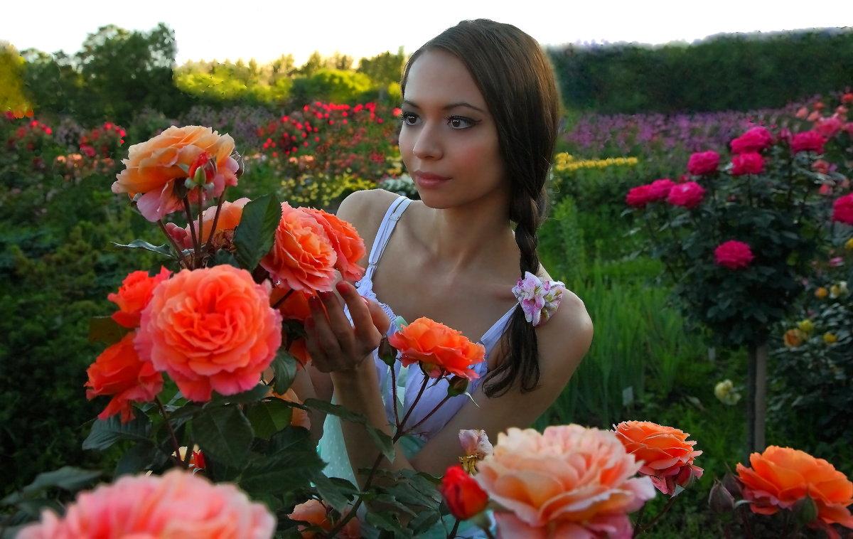 Наши цветы - М. Дерксен Derksen