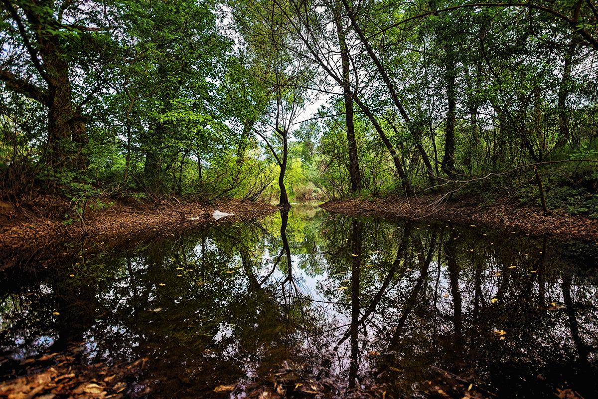 Когда весной пришла вода... - Павел Петрович Тодоров