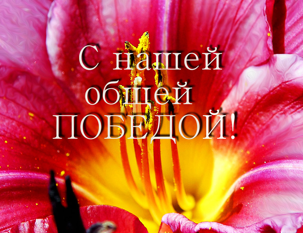 С Праздником Победы, друзья! - Надя Кушнир