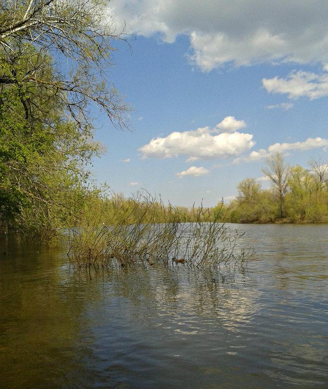 Река Сок - наталия