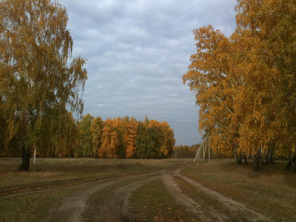 Осень - Валентина Богатко