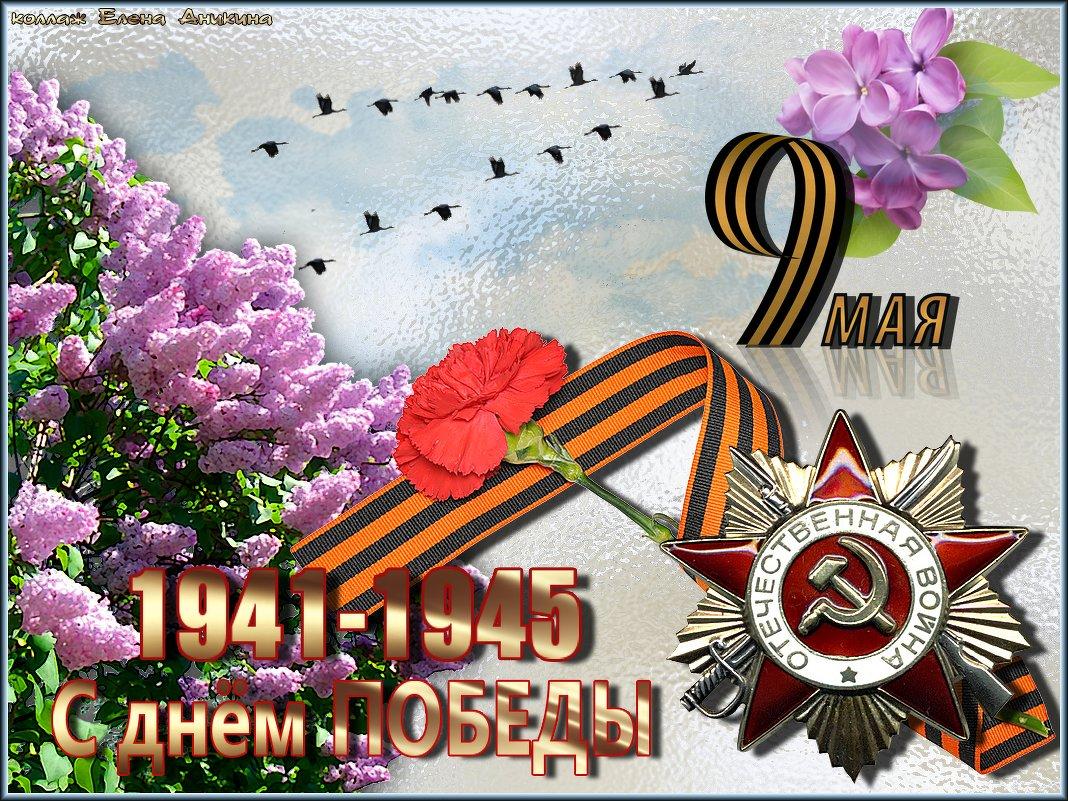 С 9 мая, днем победы мы все спешим поздравить вас!