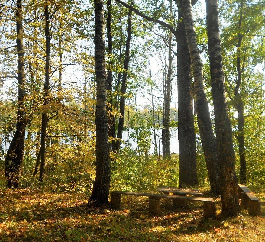 Осень - Андрей .