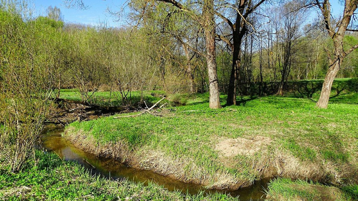 Весенний пейзаж - Милешкин Владимир Алексеевич