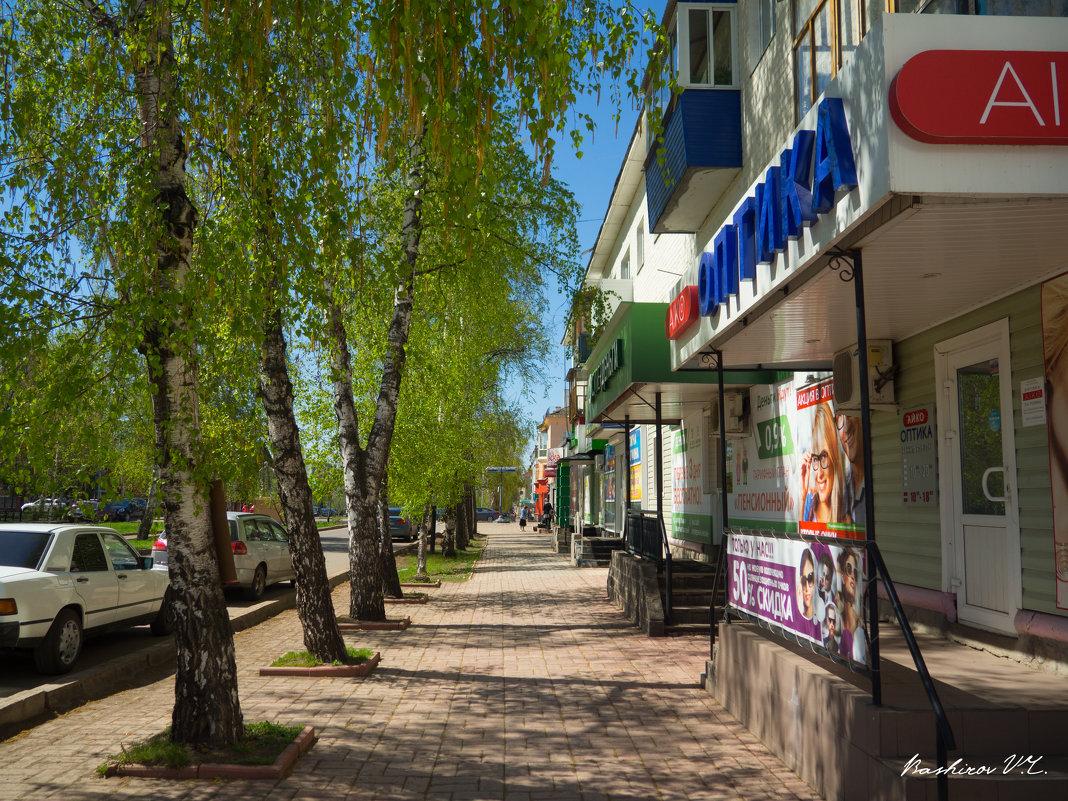 Весенняя улица - Вячеслав Баширов