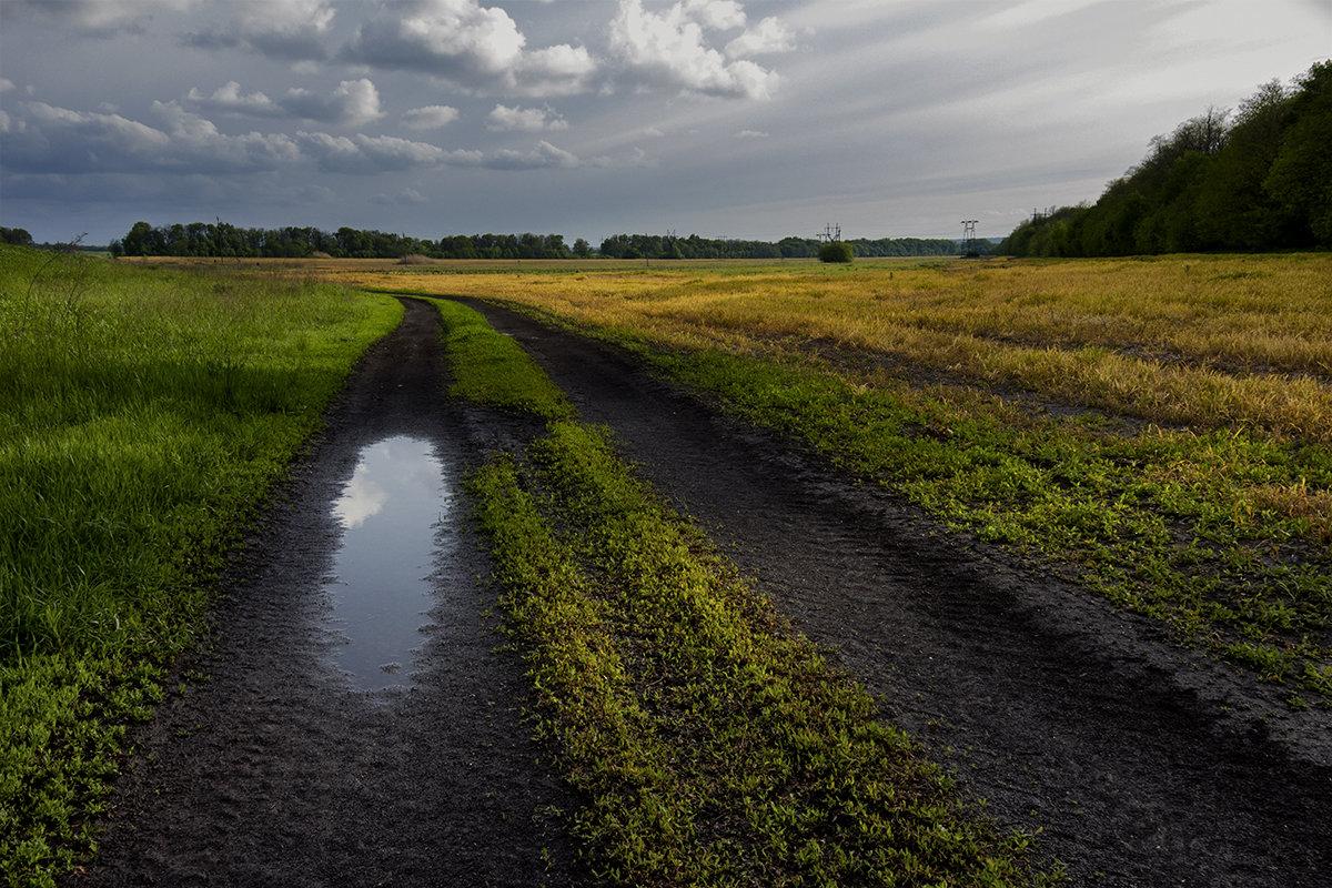 После дождя - Виталий Павлов